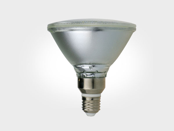 Landscape light SMD Par30