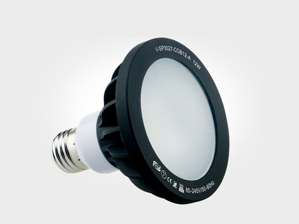 Landscape light COB Par30