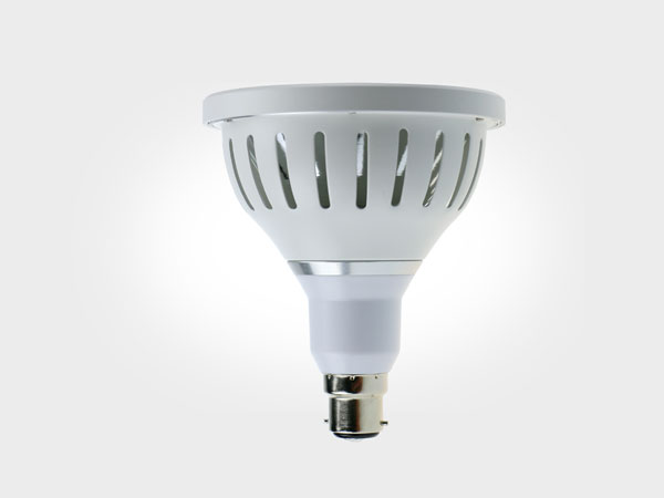 Landscape light COB Par38