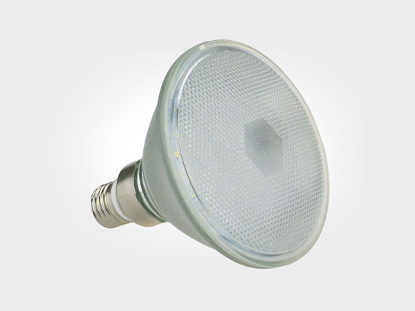 Landscape light SMD PAR38